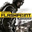 Recowé - Juegos - Operation Flashpoint 2